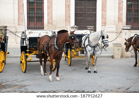 Horse carriage in the Old Town of Seville. Historic centre is the UNESCO world heritage.