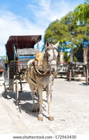Horse carriage waiting for tourists in Old Havana - stock photo
