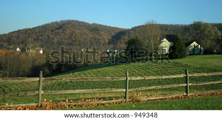 Horse Country - stock photo