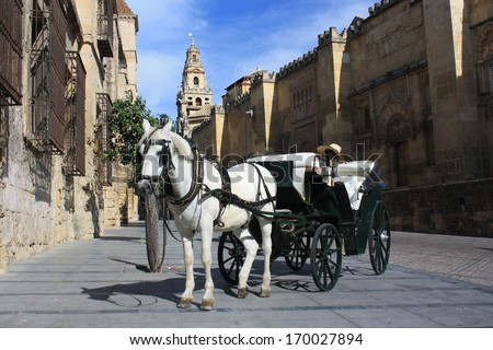 horse-drawn barouche in front of Mezquite in Cordoba - stock photo