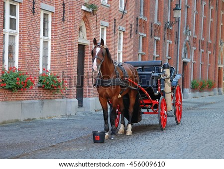 Horse-driven cab - a beautiful horse hitched to a four wheel horse carriage.This is one of the main tourist attractions in the commercial heart of medieval-looking city of Bruges (Brugge), Belgium