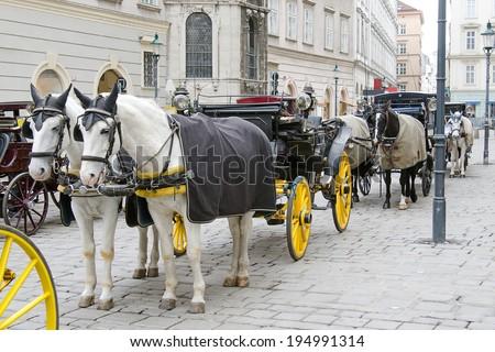 Horse-driven carriage, Vienna, Austria - stock photo
