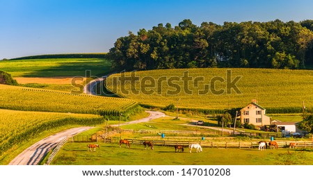 Horse farm and country road on a hill in rural York County, Pennsylvania. - stock photo