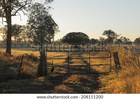 Horse farmland early morning light , queensland australia - stock photo