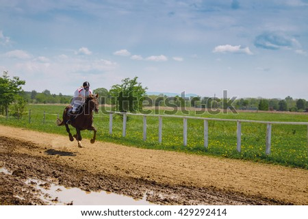 Horse gallop race at hippodrome - stock photo