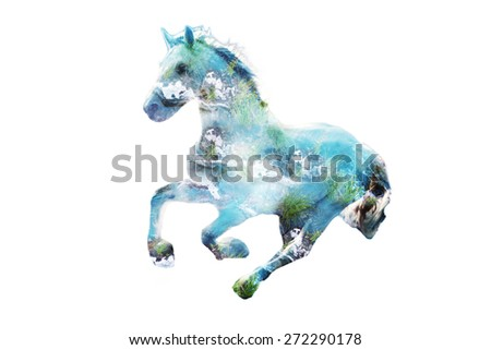horse in gallop, composite image with blue water and grass - stock photo