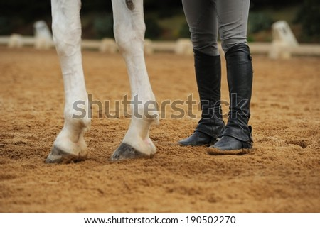 Horse legs and human legs in the manege - stock photo