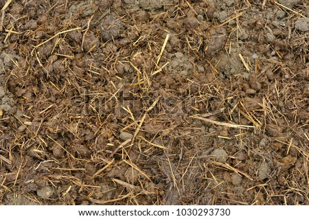 Manure Stock Images Royalty Free Images Vectors Shutterstock
