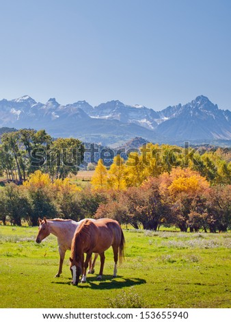 Horse pasture at the Double RL Ranch with a view of the Dallas Divide on the back. - stock photo
