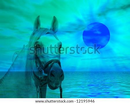 Horse portrait on a colorful sunset landscape - stock photo