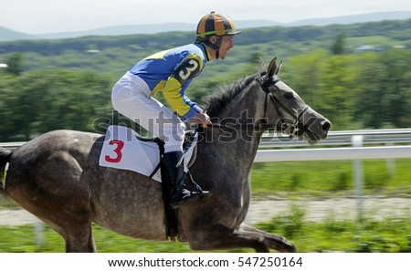 Horse race for the traditional prize Vesenni in Pyatigorsk,the largest in Russia.
