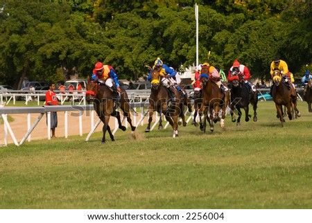 Horse races in Barbados.