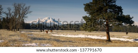 Horse Ranch at the Base of Three Sisters Mountains Oregon - stock photo