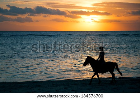 Horse ride at the sunset - stock photo