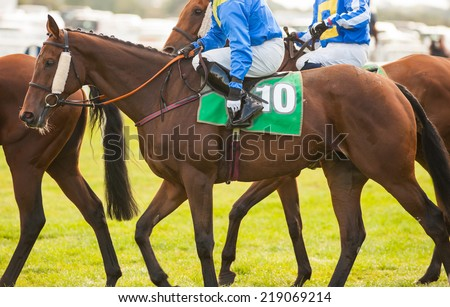 horse riders Prepares to Enter the Start Gate  - stock photo
