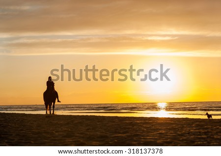Horse-riding at the beach on sunset background. Multicolored summertime outdoors horizontal image. - stock photo