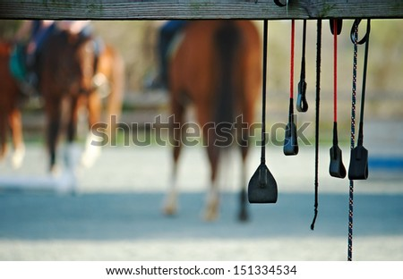 Horse riding crops - stock photo