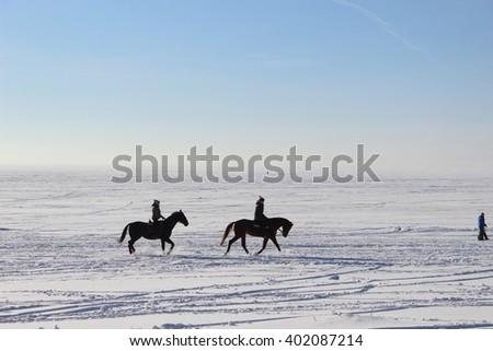 Horse riding in winter day