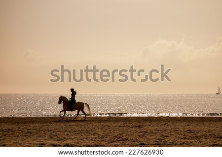 Horse riding silhouette at the beach in a clear golden hour - stock photo