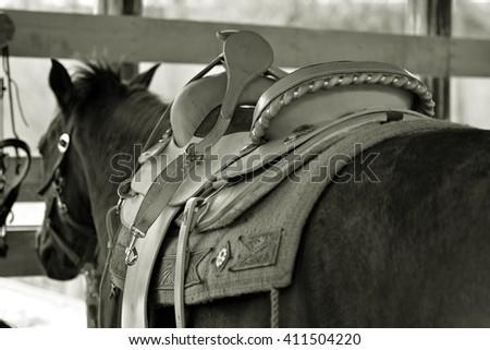 Horse saddle - stock photo