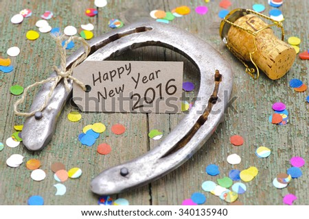 horse shoe as talisman for new year 2016 - stock photo