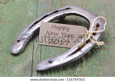 horse shoe as talisman for new years 2017