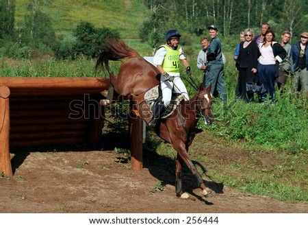 Horse showjumping 2