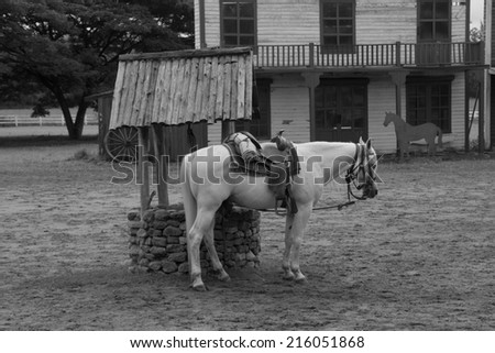 horse with western working saddle tied to fence at roundup, - stock photo