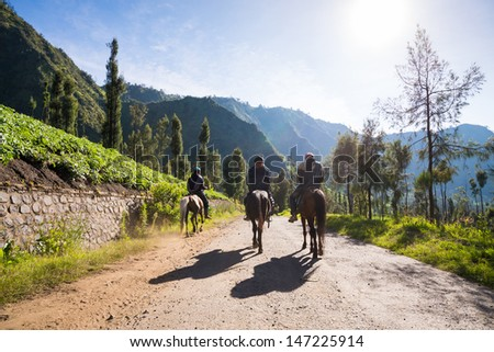 Horseman near Mount Penanjakan,The best views from Mount Bromo, East Java, Indonesia - stock photo