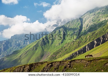 Horses are on the pasture among the mountains of the Caucasus - stock photo