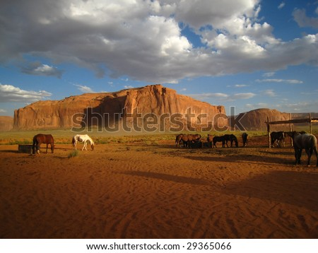 Horses in Monument Valley, Utah, USA - stock photo