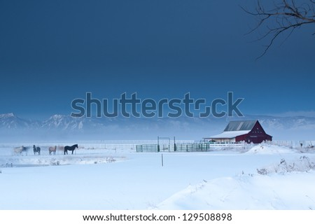 Horses in Pasture with Red Barn and Rocky Mountain Blue Sky with room for text - stock photo