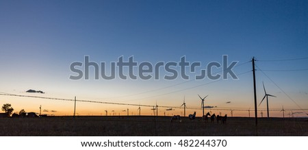 Horses on the plains at sunset. Wind turbines spinning in the background.