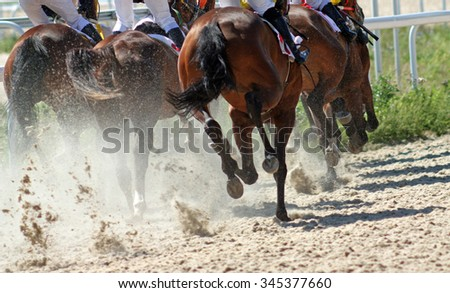 Horses running at the sandy track.