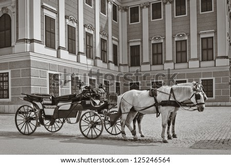 Horses with carriage - stock photo