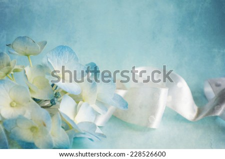 Hortensia flower  - stock photo