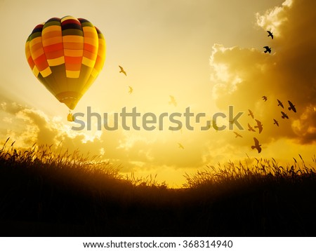 Hot air balloon flying with birds in sunset sky, - stock photo