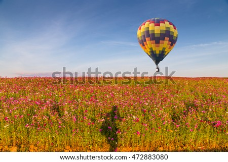 Hot air balloon over cosmos flowers with blue sky