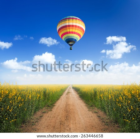Hot air balloon over dirt road into yellow flower fields with clear blue sky - stock photo