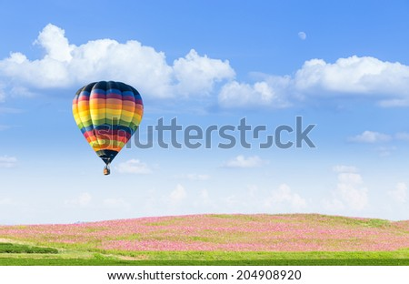 Hot air balloon over pink cosmos fields with blue sky background - stock photo