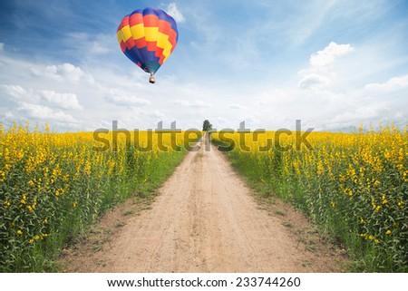 Hot air balloon over yellow flower fields - stock photo