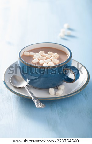 hot chocolate with mini marshmallows  - stock photo