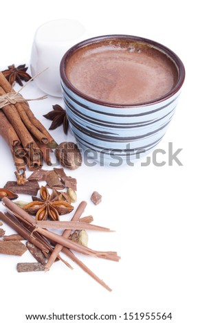 Hot cocoa and spices - stock photo