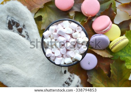 hot cocoa with marshmallows, macaroon, autumn concept