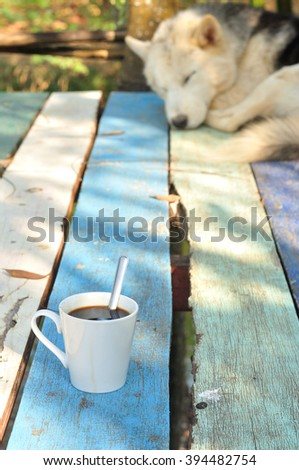 Hot coffee with sleeping dog, Black coffee concept - stock photo