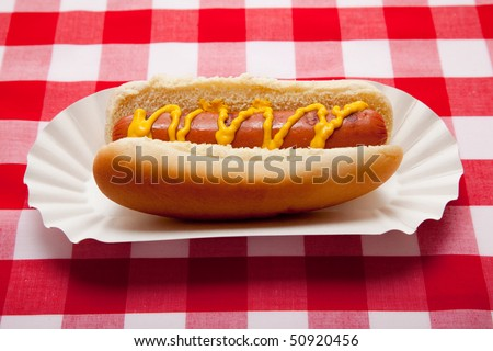 Hot dog with mustard on red gingham table cloth - stock photo