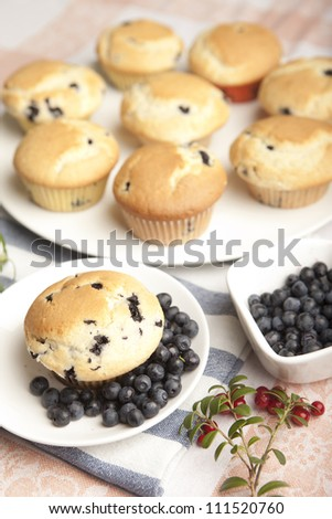 Hot homemade blueberry muffins just from oven - stock photo