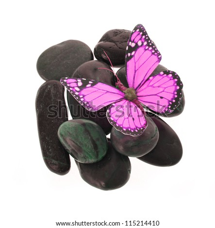 hot pink butterfly on the stones isolated on white - stock photo