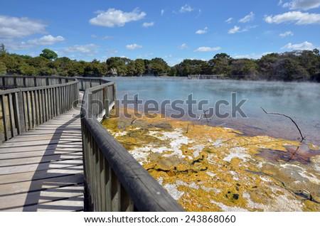 Hot pools in Kuirau Park Rotorua, New Zealand. - stock photo