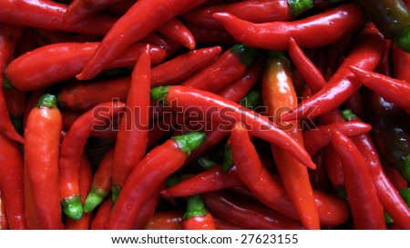 Hot red chillies - stock photo